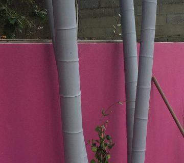 Bambou déco
